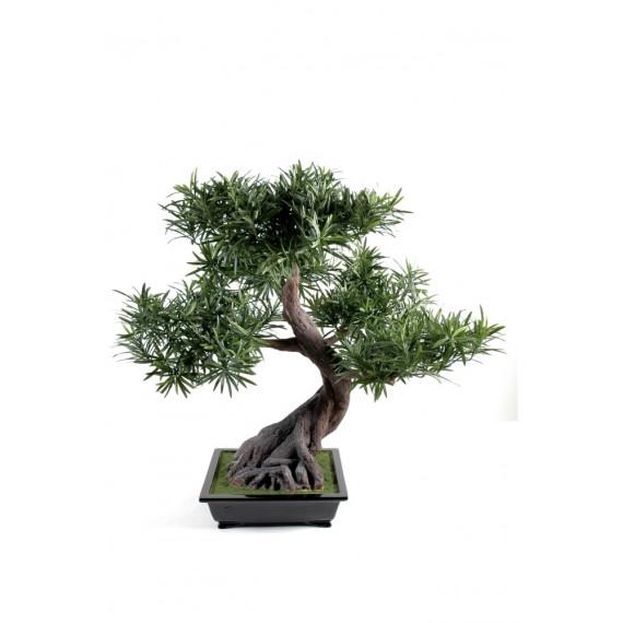 Bonsaï Podocarpus Artificiel