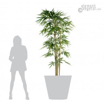 Bambou Larges Feuilles Semi-Naturel - Ht 210 cm