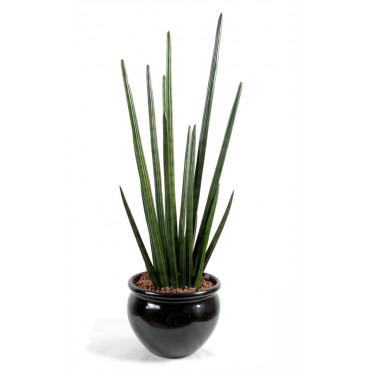 Sanseveria Cylindrica Luxe Artificiel