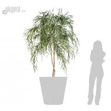 Saule Semi-Naturel - Ht 210 cm