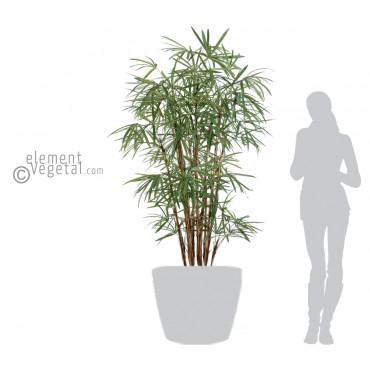 Palmier Raphis Lady Semi-Naturel - Ht 180 cm