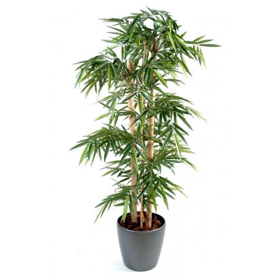 Bambou Grosses Cannes Semi-Naturel En Pot Rond - Ht 180 cm