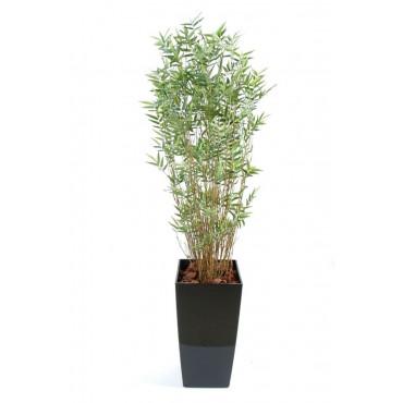 Bambou Oriental Multiple Semi-Naturel En Pot Rond - Ht 170 cm