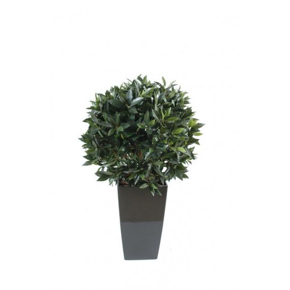 Boule de Laurier Semi-Naturelle En Pot Kubis - Ht 120 cm
