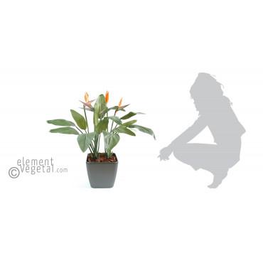 Strelitzia Artificiel En Pot Carré - Ht 95 cm