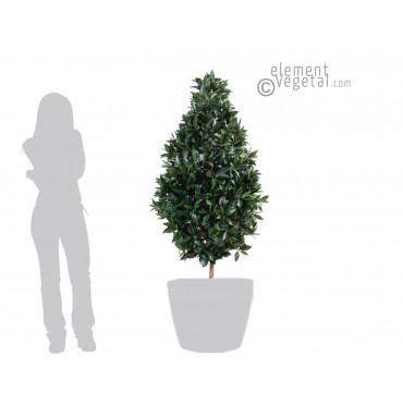 Topiaire de Laurier Large Semi-Naturelle - Ht 160 cm