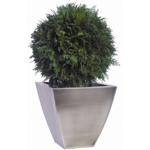 Boule de Thuya Stabilisé diamètre 30 cm