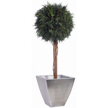 Topiaire Boule de Thuya Stabilisé diamètre 30 cm