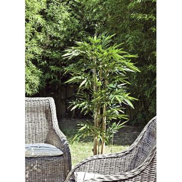 Bambou Grosses Cannes Semi-Naturel - En Contexte