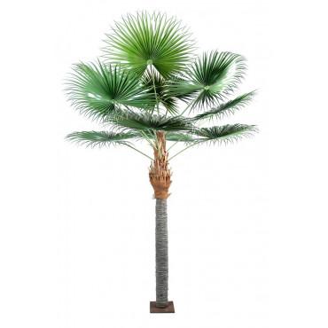 Palmier Chamaerops Artificiel