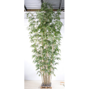 Bambou Géant Luxe Semi-Naturel