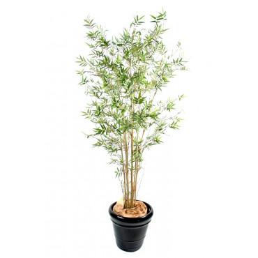 Bambou Oriental Petites Feuilles Semi-Naturel