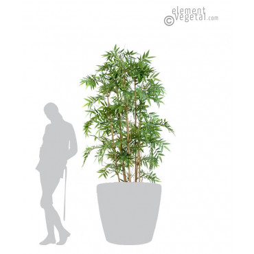 Bambou Oriental Semi-Naturel 180 cm
