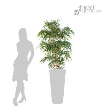 Bambou Semi-naturel 150 cm
