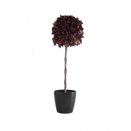 Topiaire Boule de Lierre Stabilisé - Rouge diamètre 45 cm