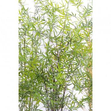 Bambou Extérieur Cannes Noires Artificiel - Résistant aux UVs - Zoom