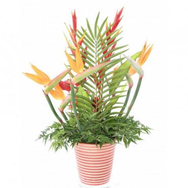 Bouquet d'Anthurium Strelitzia Artificiel