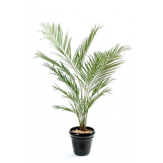 Palmier Kentia Artificiel