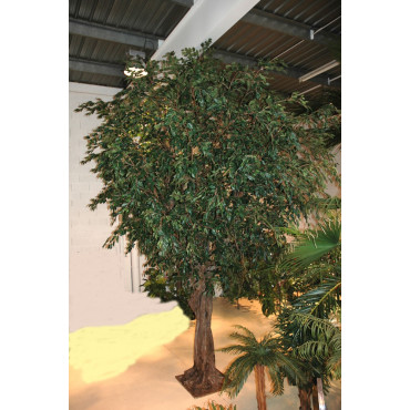 Ficus Géant Artificiel en contexte