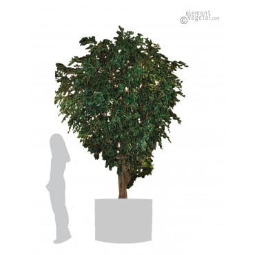 Ficus Géant Artificiel 350 cm